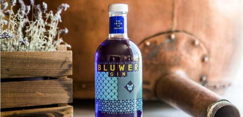 Nace Bluwer Gin, concebida para conquistar el segmento de las ginebras experienciales